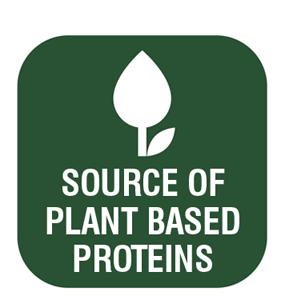 5-vegetable-protein-en