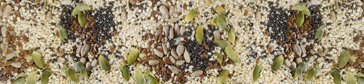 low-carb-seeds